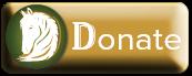 Donate to Swingin' D Horse Rescue